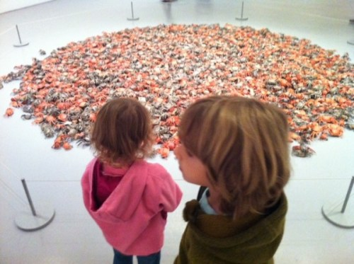 In case you were wondering what a pile of 3,000+ crabs looks like