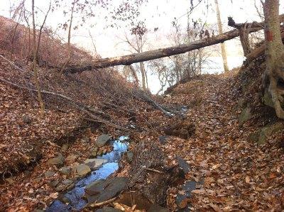 A stream runs through it