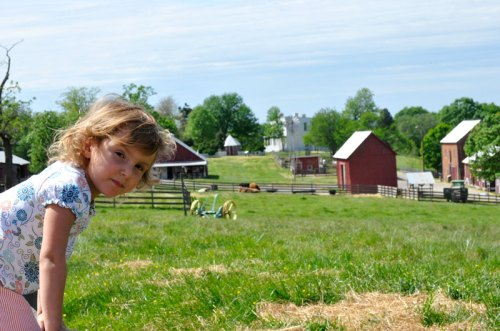 Oxon Hill: A farm just 15 minutes from the city