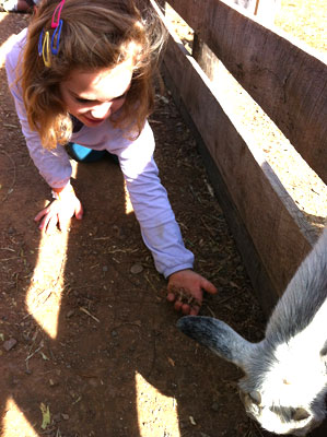 trip_goat