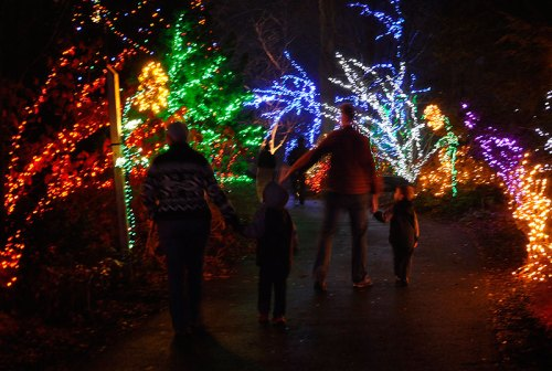 A family strolls through Brookside's Garden of Lights