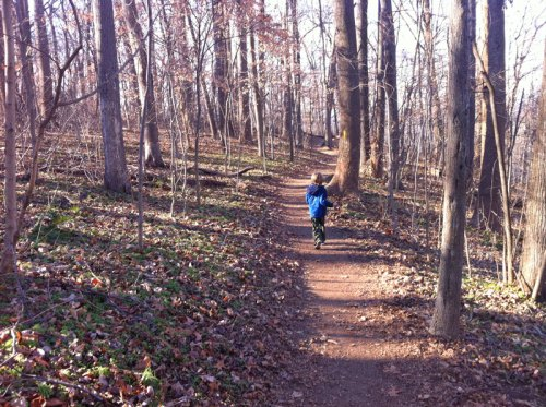 Take a winter hike at Turkey Run Park