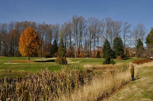 Fall is an ideal time to visit Brookside Gardens