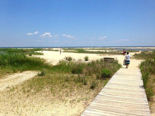 flagponds_beach