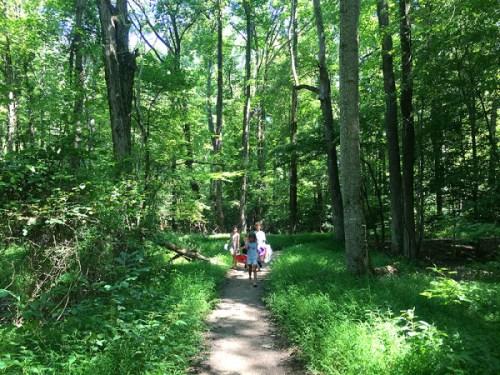 purse_trail