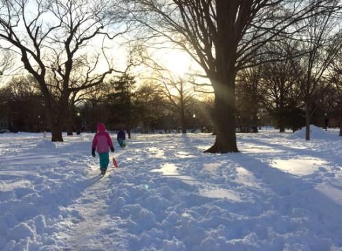 snowzilla_LP
