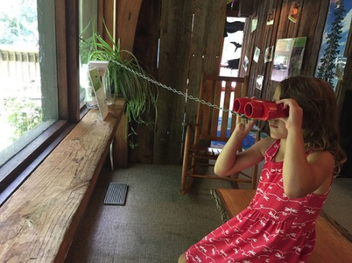Watching the wildlife outside at Watkins Nature Center