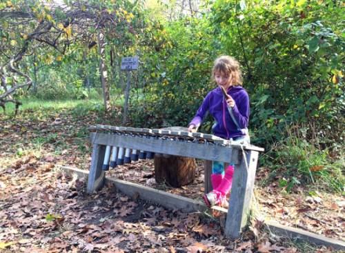 Jammin' at the Arboretum