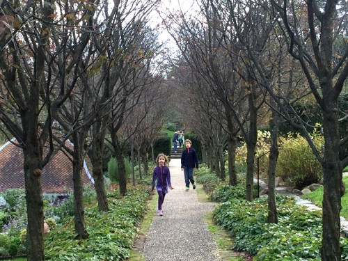 Roam free at Dumbarton Oaks Gardens - there's no entry fee this time of year!