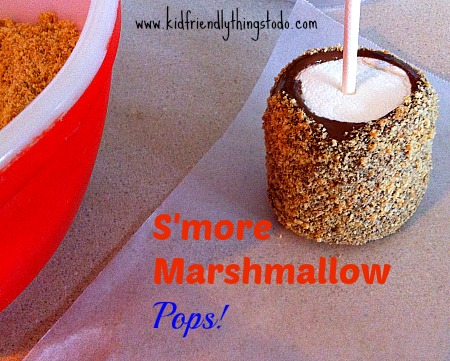 Make S'mores Marshmallow Pops. They are a lot less expensive than S'mores, and a very fun substitute! So stinking adorable!