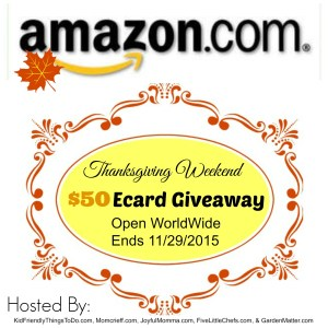 It's a $50 Amazon Ecard Giveaway for a little help with your Christmas Shopping! Come on over and enter to win! - KidFriendlyThingsToDo.com