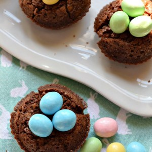 Easy to make Brownie Bird Nest for a spring or Easter kid friendly treat - great dessert for Easter www.kidfriendlyhthingstodo.com
