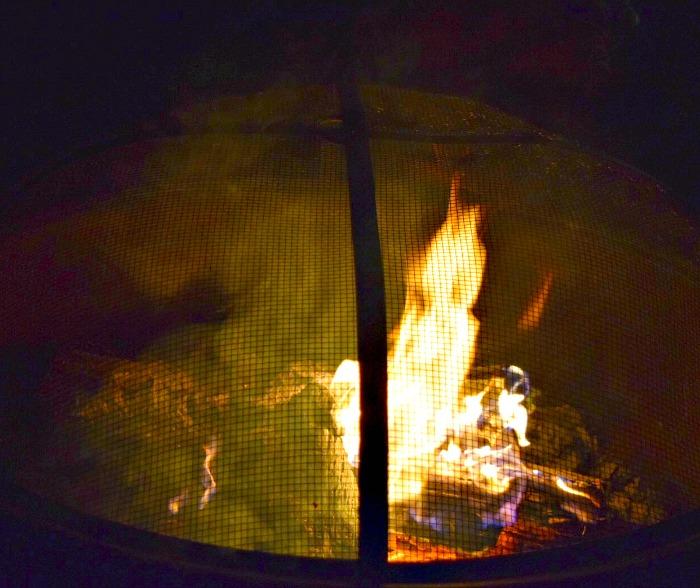 IMG_2115-smores-campfire