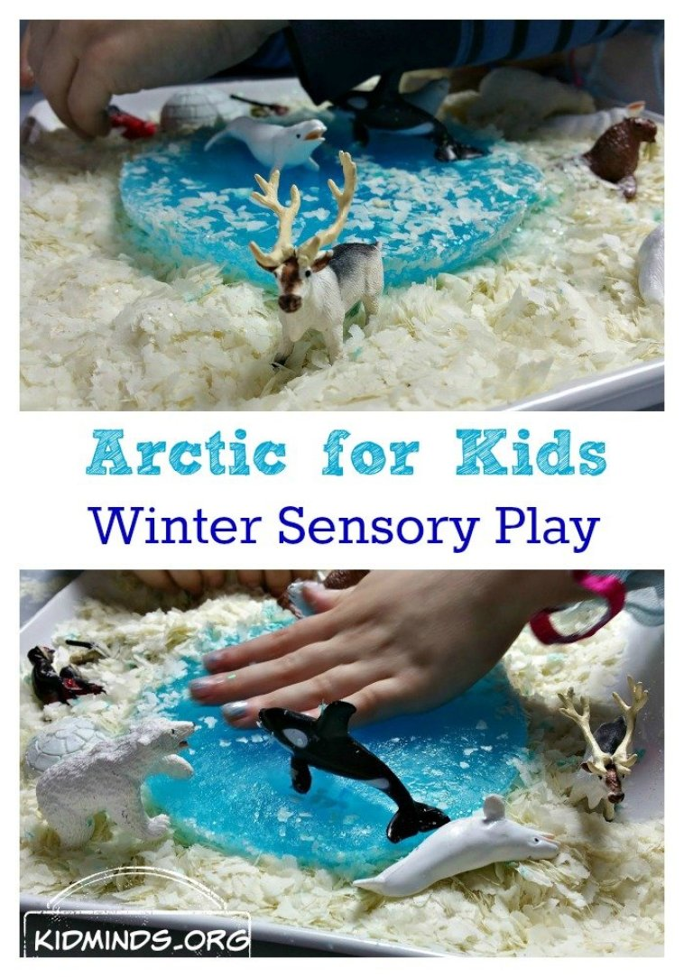 Peek at the Week - Arctic Winter Sensory Play from Kidminds.org | @bisforbookworm