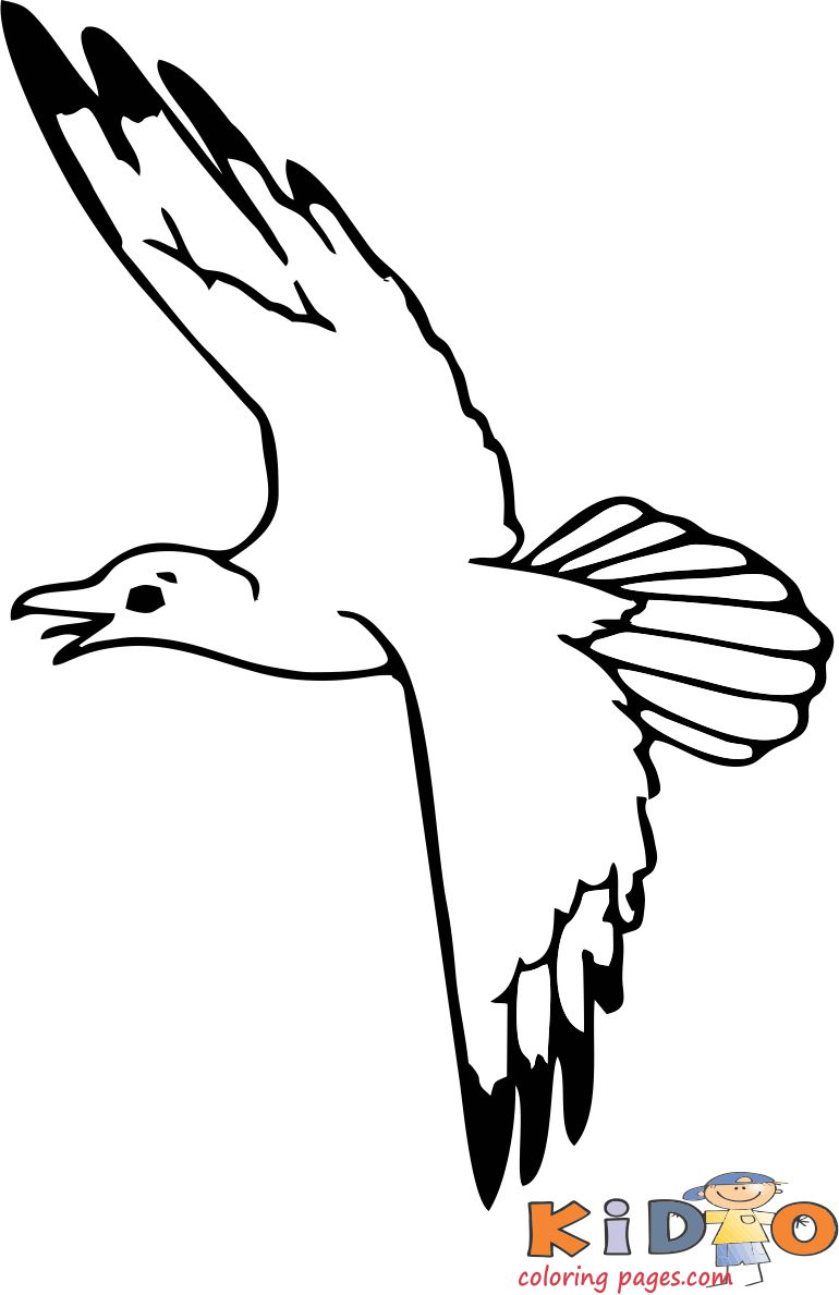 Seagull pages to color for free