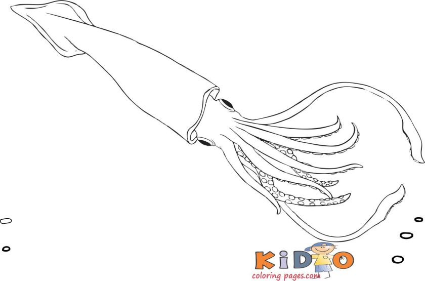 Squid colouring in page for kids