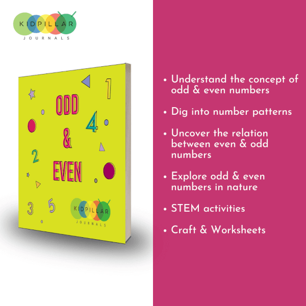 odd & even numbers for kids