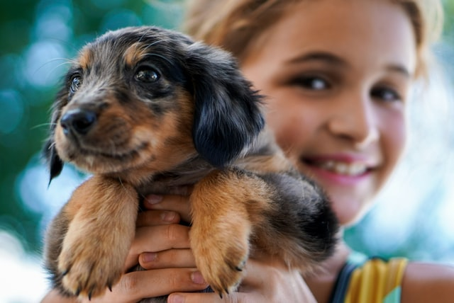 Pets benefits for kids