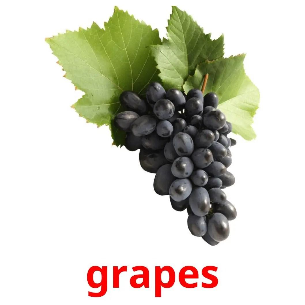 20 Free Fruits Flashcards in english (PDF files)