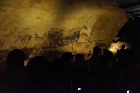 ラスコー展 等身大洞窟模型