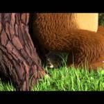Маша и Медведь – Кто не спрятался, я не виноват (О, ёжик!)