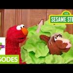 Furchester Hotel: Elmo and the Pony in Disguise (Full Episode)