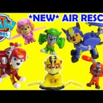 NEW Paw Patrol Air Rescue Pup Packs and Badge