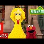 Sesame Street: Elmo And Big Bird Take A Break With Me