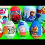 SURPRISE Toys Eggs Kinder Zootopia Paw Patrol Pooh Shopkins Blind Bag Disney Frozen NUM NOMS