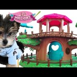 ZUMI TOYS – Lil Woodzeez Treehouse Pets *Raccoon Family* DCTC Puppy Review