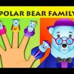 Polar Bear Finger Family – Animal Finger Family Songs For Children