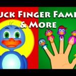 Duck Finger Family | Cat Finger Family | Dog Finger Family and More