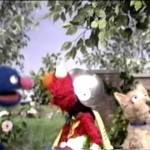 Sesame Street – The Adventures of Asking Elmo