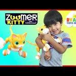 Zoomer Kitty Whiskers The Orange Tabby Spin Master Unboxing and Play Ryan ToysReview