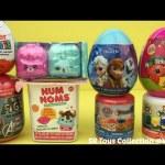 Surprise Toys for Kids Shopkins Season 5 Kinder Teenage Mutant Ninja Turtles Num Noms Disney Frozen