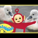 ★Teletubbies English Episodes★ Cygnets ★ Full Episode – HD (S07E161)