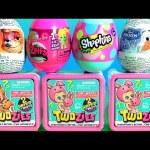 TOYS SURPRISE Twozies Baby Pets Shopkins Egg Zelfs Egg Disney Frozen Zootopia Zootropolis Kids toys