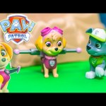 PAW PATROL Nickelodeon Paw Patrol Skye and Rocky Paw Patrol Video Toy Review