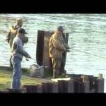 Диалоги о рыбалке – Ростов на Дону Дельта Сельдь