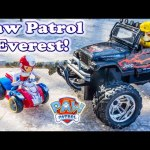 PAW PATROL Nickelodeon Paw Patrol Search for Everest a Paw Patrol Video Parody
