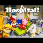 PAW PATROL Nickelodeon Paw Patrol & Peppa Pig in the Hospital Toys Video Parody
