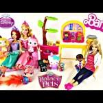 Barbie Zoo Doctor and Disney Princesses Palace Pet Check-Up Center Ariel Belle Aurora Doc McStuffins