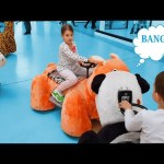 Family fun play area for kids. Video 2017