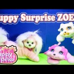 PUPPY SURPRISE ZOEY PUPPIES SURPRISE YouTube Toy Review