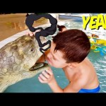 Kids playing at water park. Funny video 2019 from KIDS TOYS CHANNEL