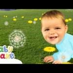 Baby Jake – Lovely Sunflowers! | Full Episodes | Yacki Yacki Yoggi | Cartoons for Kids