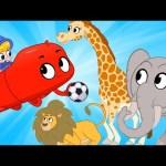 Zoo Soccer – Morphle's Ball   My Magic Pet Morphle   Cartoons for Kids   Morphle TV