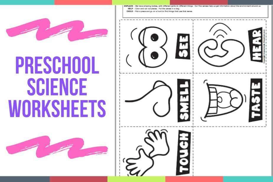 Preschool Science Activities Worksheets