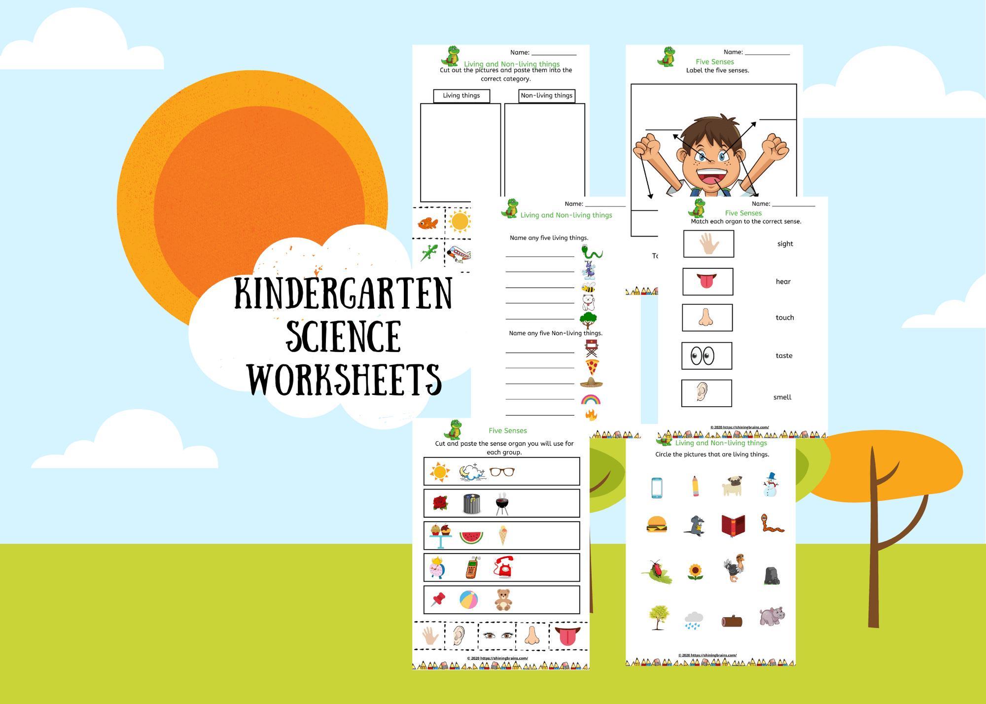 Preschool Science Worksheet For Kindergarten