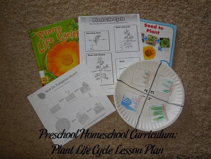 Preschool Worksheets On Plants 8